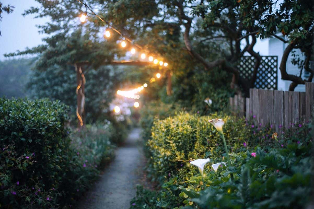 Consider Ambient and Feature Lighting
