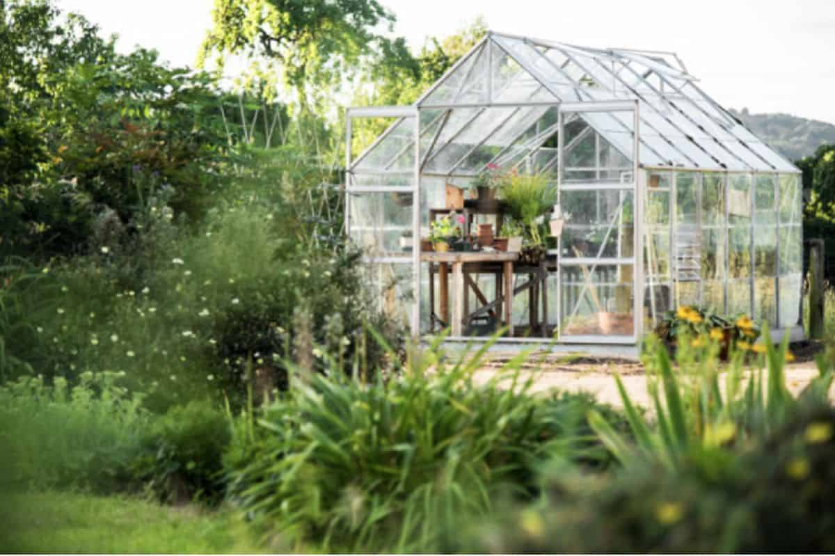 17 Cool DIY Greenhouse Ideas That are Easy and Cost-Effective to Build