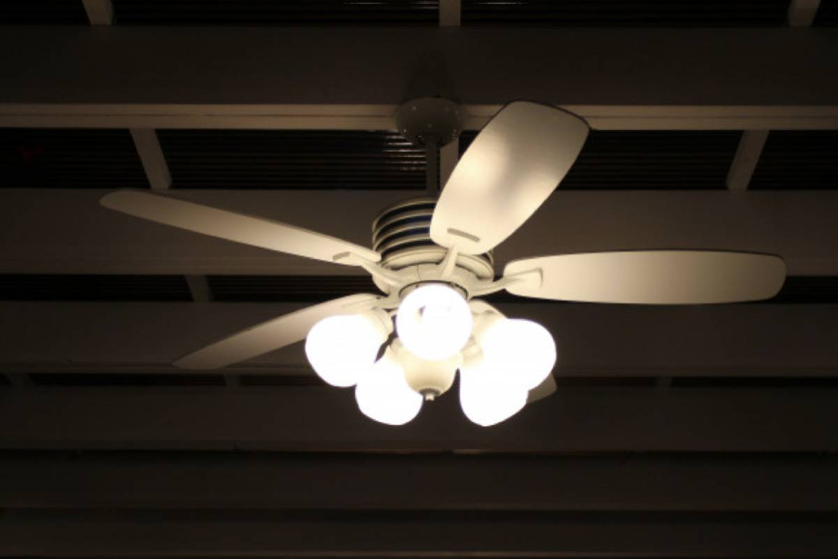 Top 5 Best Ceiling Fans with Lights